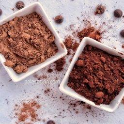 Qué es la cocoa dutch